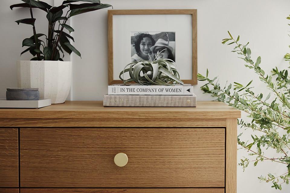 Dresser_plants.jpg#asset:4235