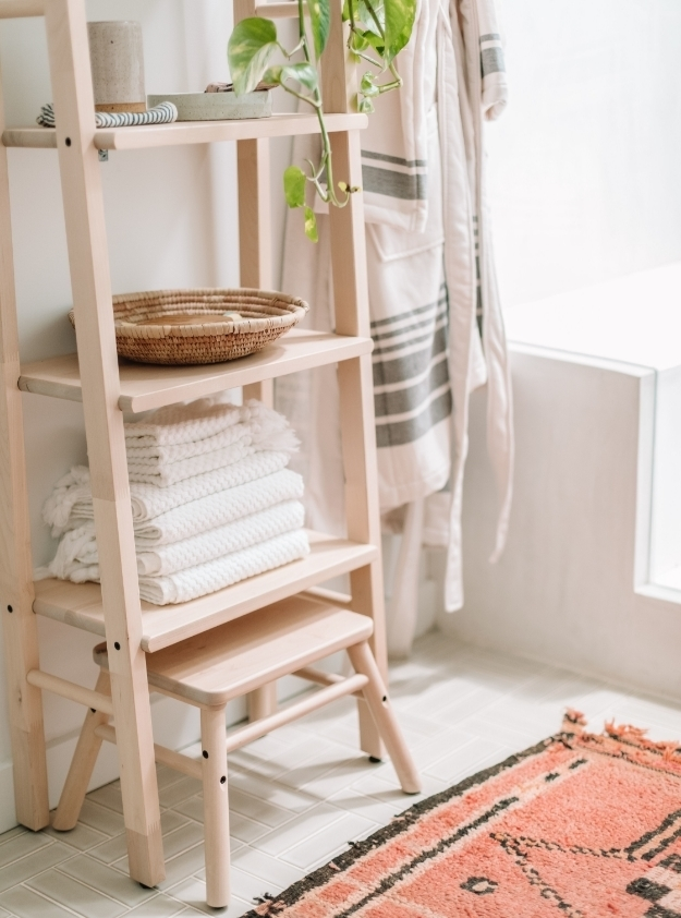 Rug-ladder-shelves-plant.jpg#asset:6046