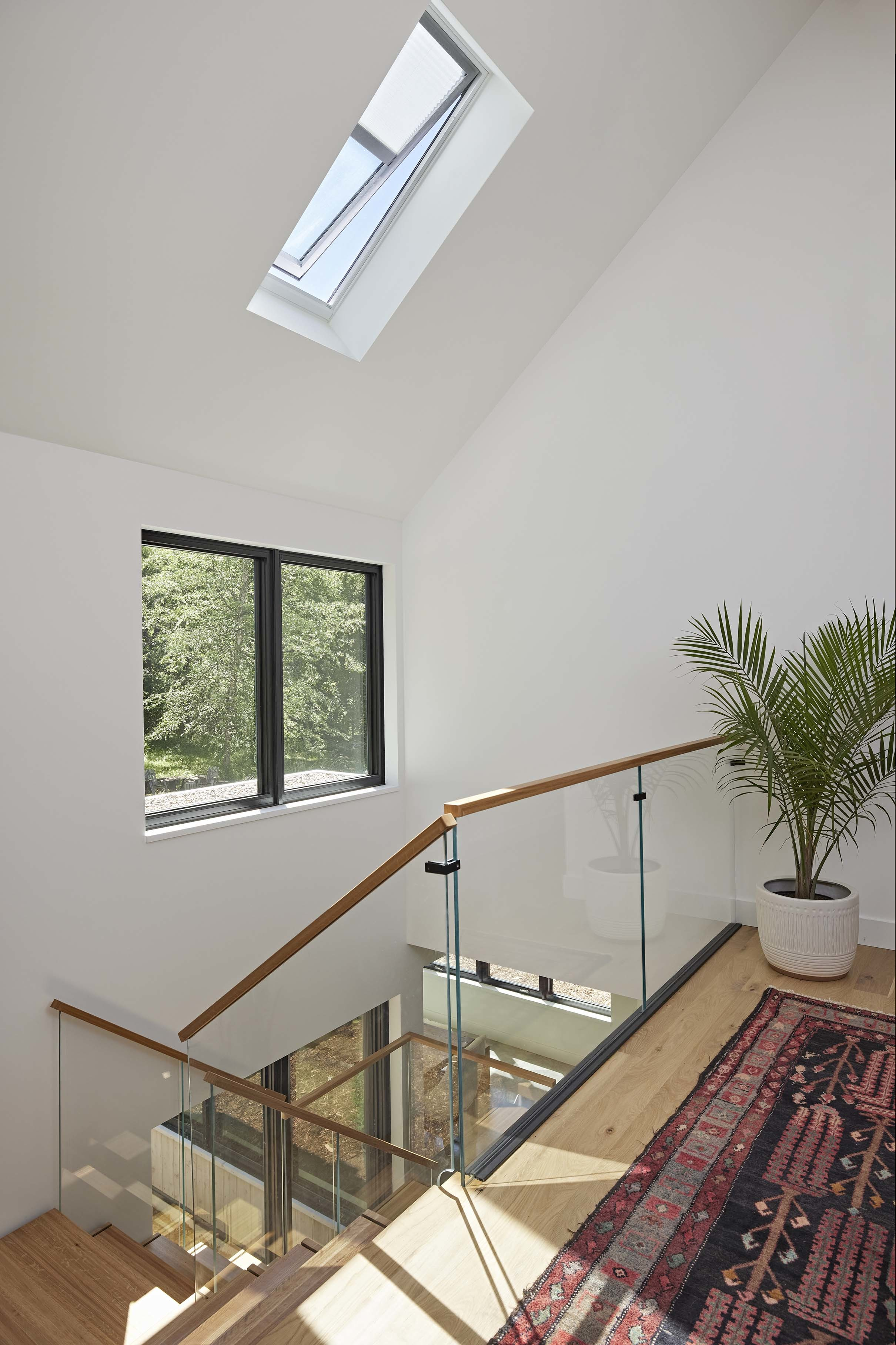 Stairwell open skylight shades rug plant