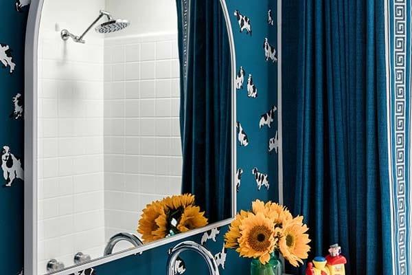 Bathroom mirror shower