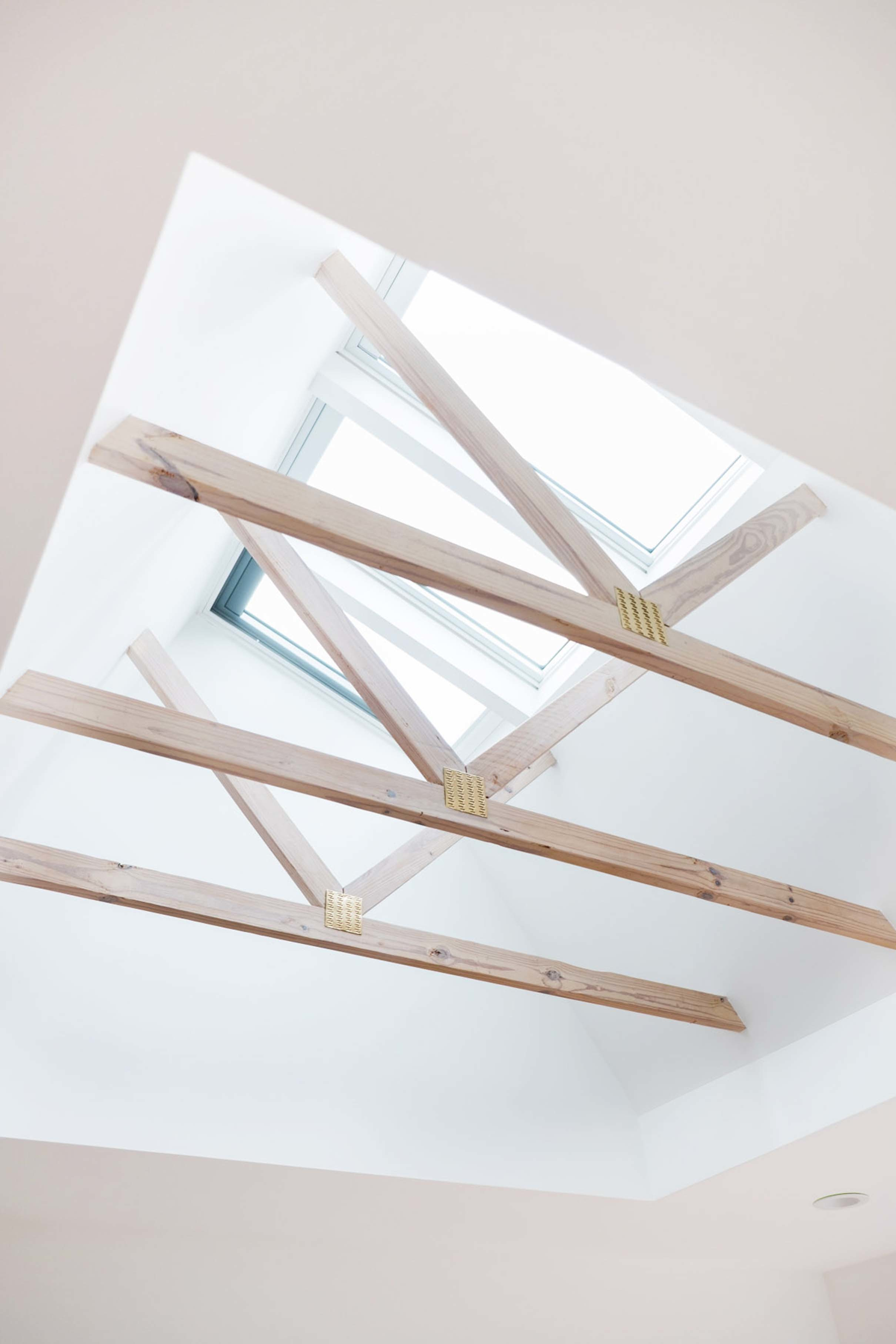 Skylights combi flashed exposed trusses