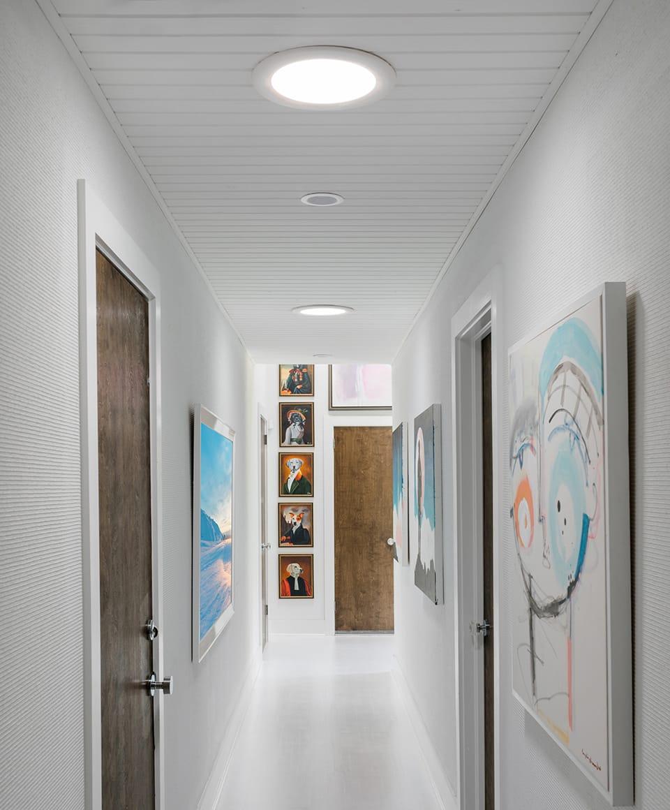 hallway-sun-tunnel-feat.jpg#asset:2806